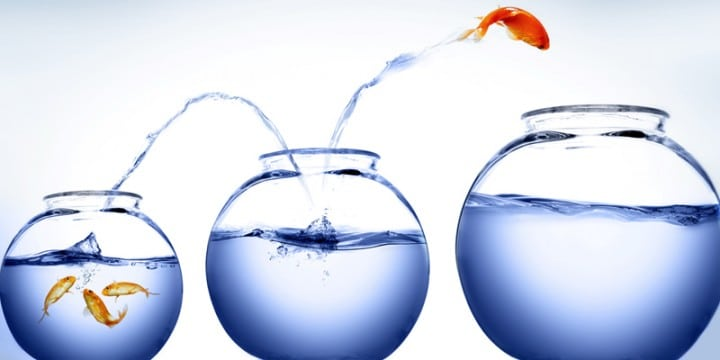 Conférenciers Québec, Formation, Motivation et Team Building - Formax - Votre élan vital